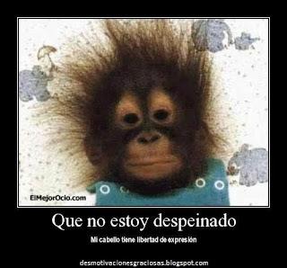 Desmotivaciones De Amor | Memes Para Facebook en Español
