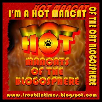 Hot Mancat!