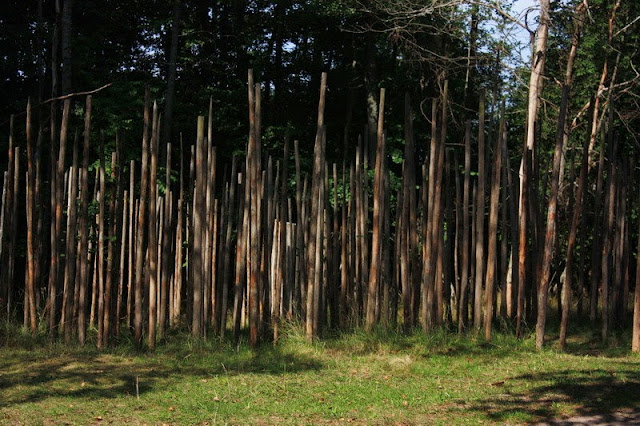 Conjunto de lanzas de madera