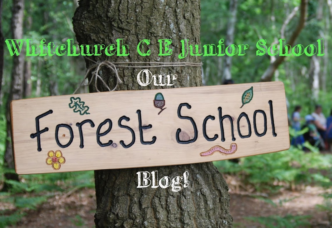 WJS Forest School