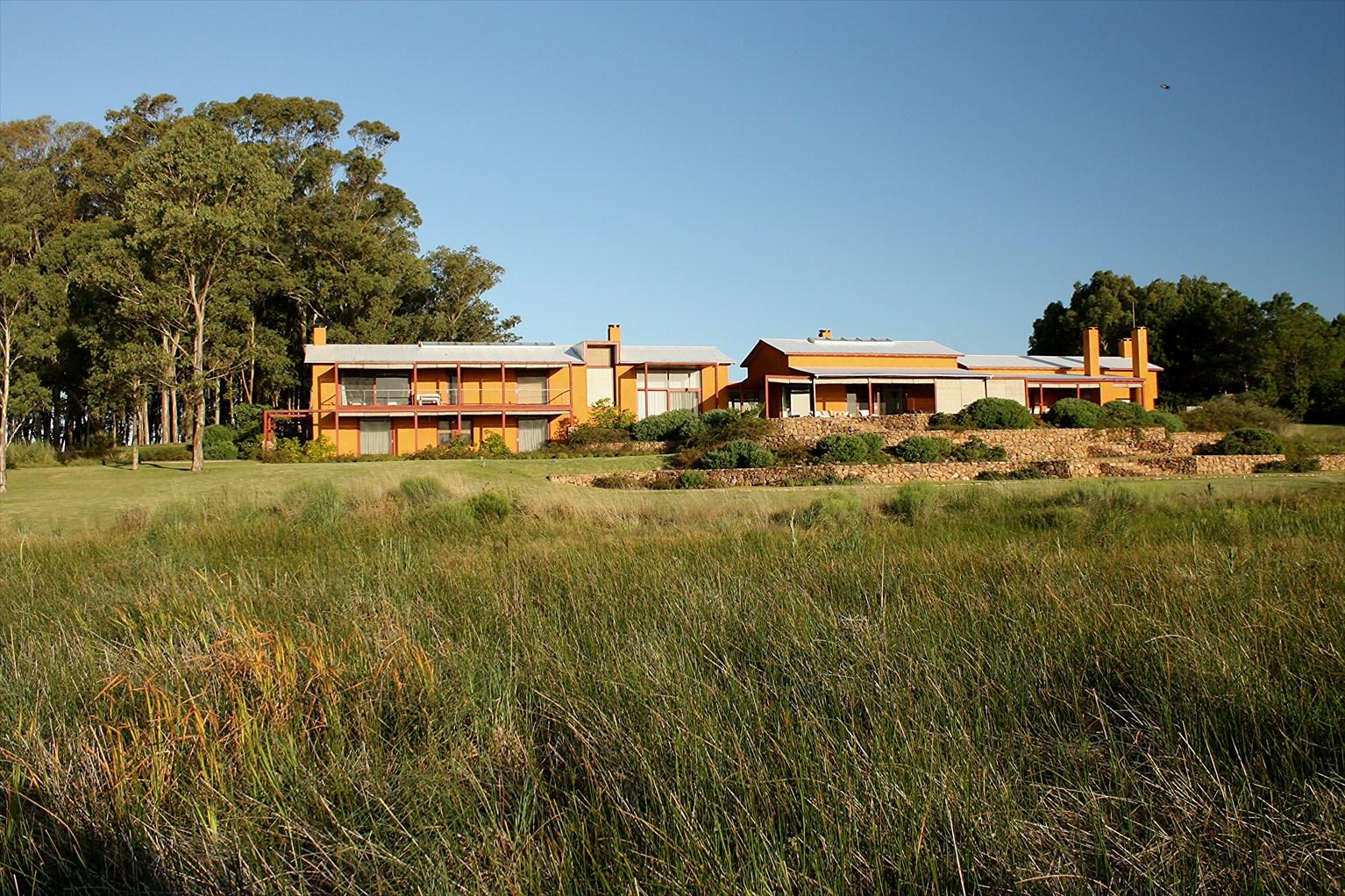 View from Federal Twist: Juan Grimm: a garden in Uruguay