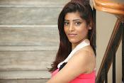actress Gayatri glamorous photos-thumbnail-4