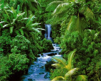 Best Natures In Oregan