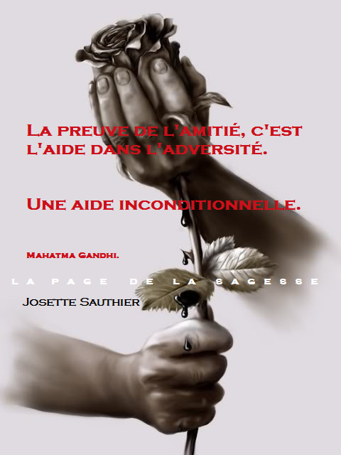 citation rencontres amitie