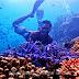 Spot Snorkeling Dan Diving Karimun Jawa