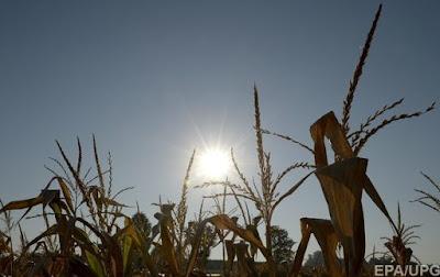 В ближайшие сутки погоду в Украине будет определять жаркая и сухая воздушная масса. Об этом сообщает Укргидрометцентр.
