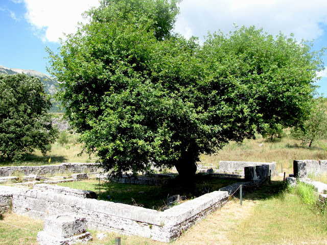 Dodona, Templo de Zeus