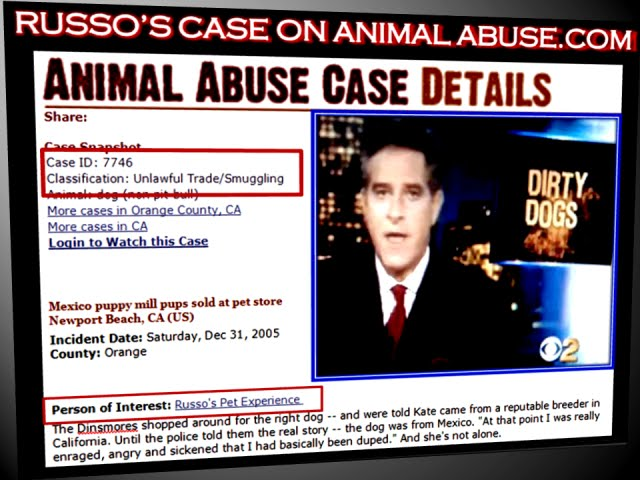 MEX ANIMAL ABUSE DETAILS- CLICK MEX VIDEO