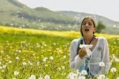 Les moyens pour soulager une allergie