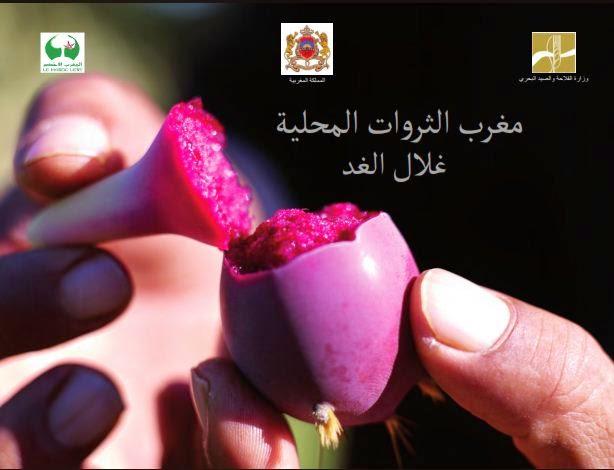http://www.agriculture.gov.ma/sites/default/files/maroc-des-terroirs-ar.pdf