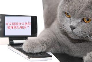令貓咪一見戀上的Mon Petit 全新湯系