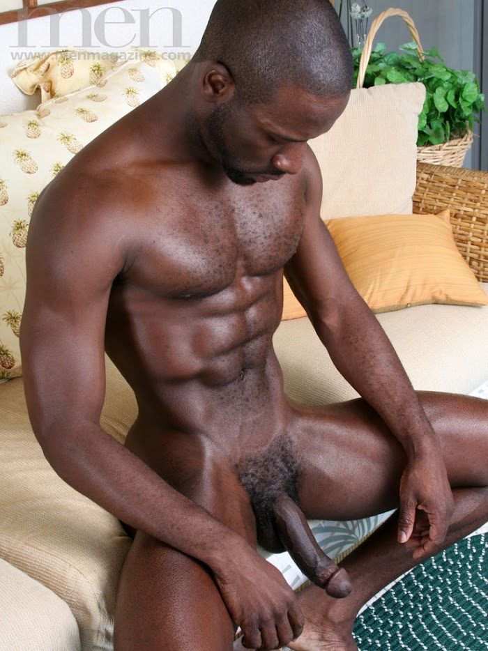 hairy black cocks