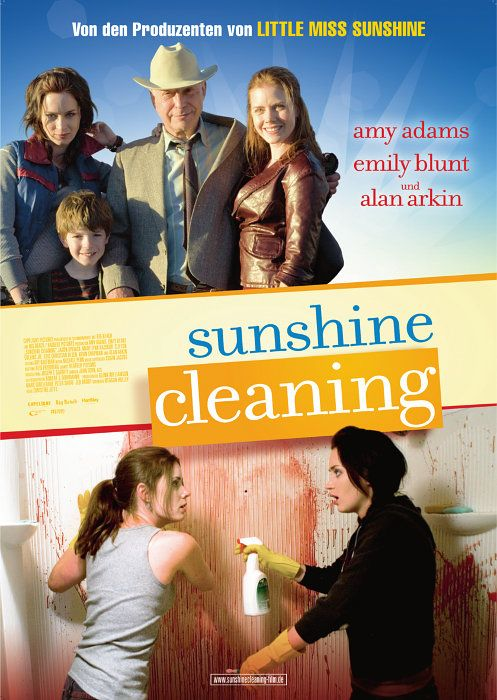 Download Sunshine Cleaning Trabalho Sujo BDRip Dual Audio Xvid