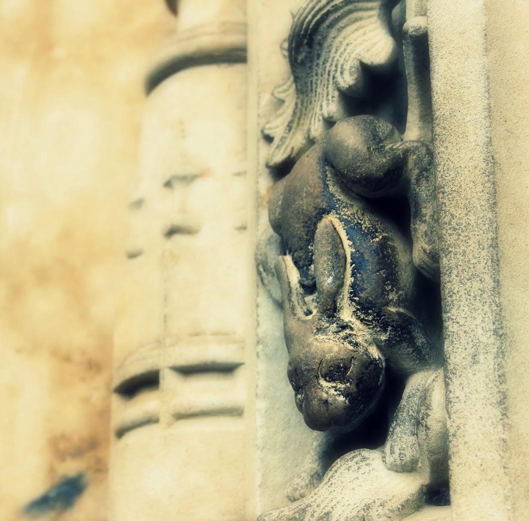 Liebre catedral de Salamanca