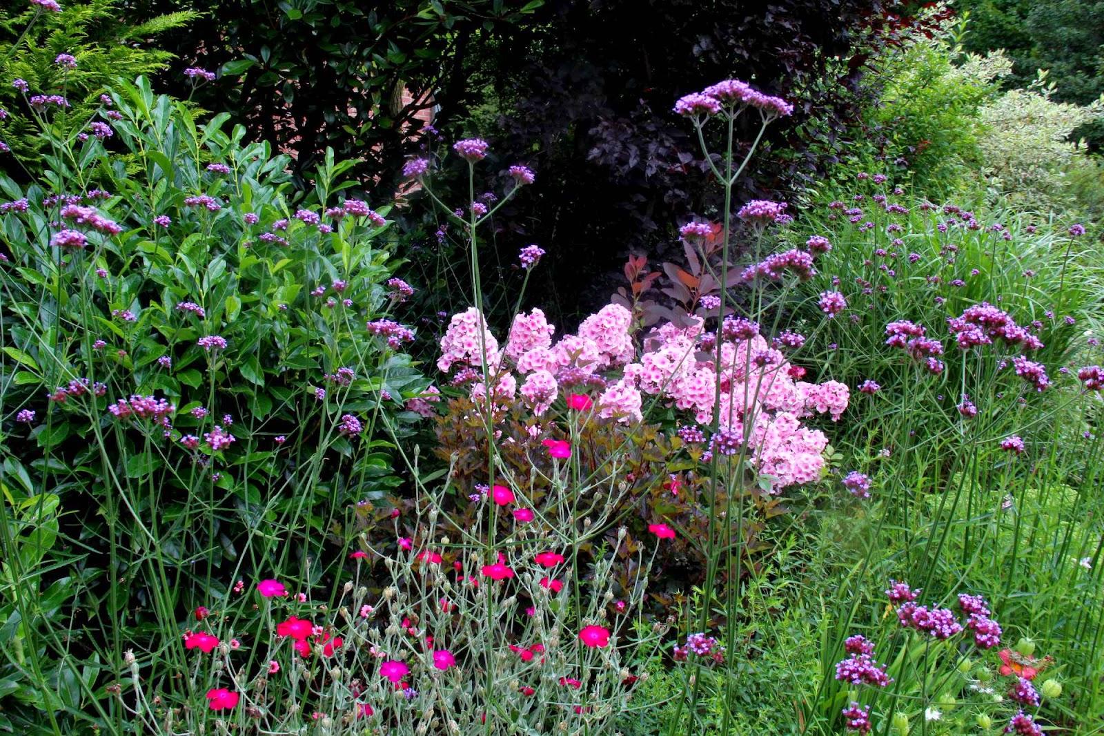Je suis au jardin dans le beau jardin de fabienne for Au jardin des sans pourquoi
