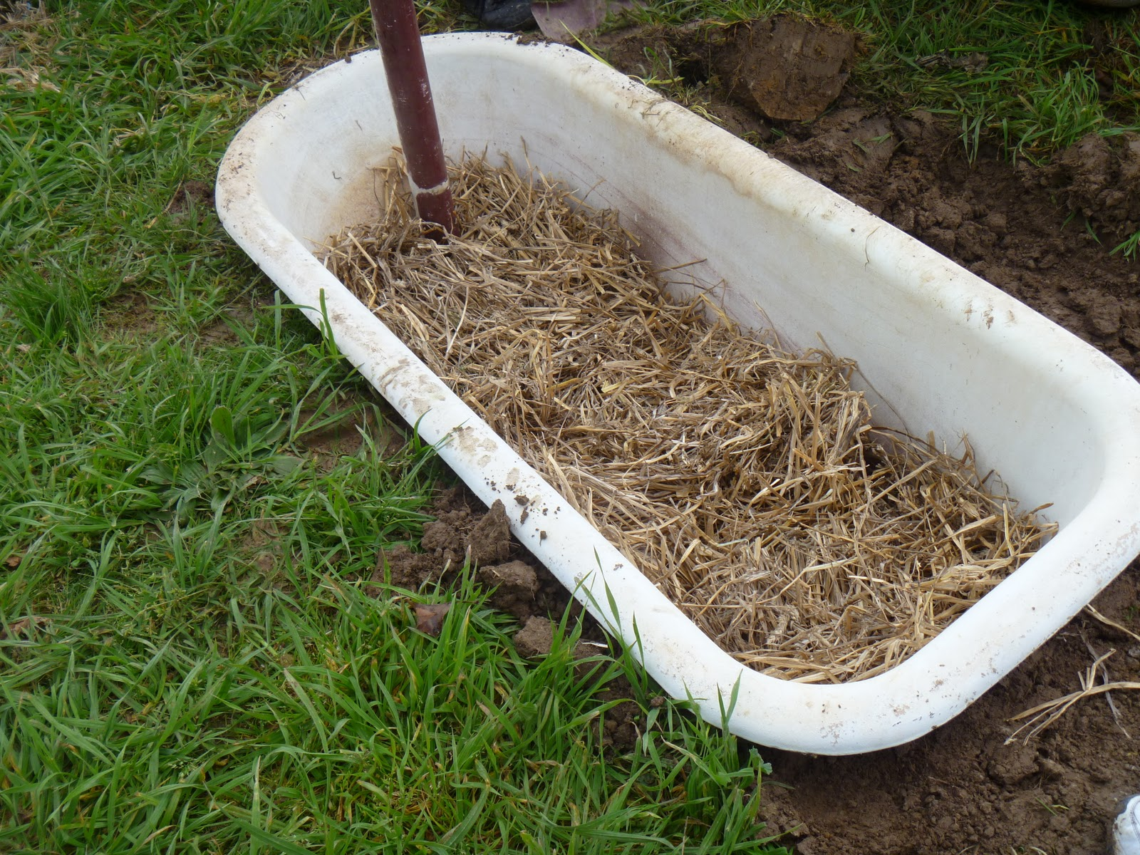 Wicking Garden Beds Permaculture