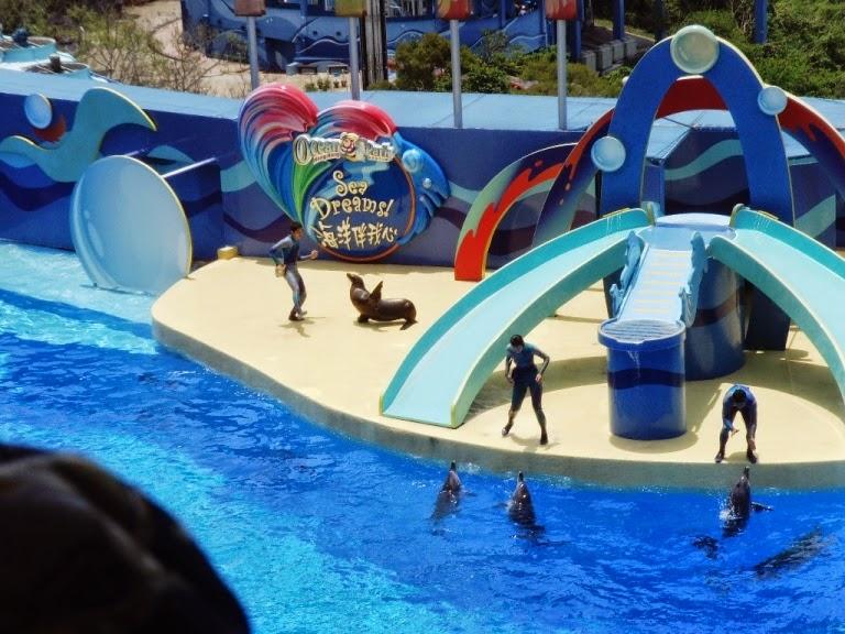 marine show ocean park