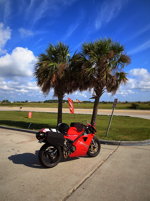 Ducati 916 motorcycle in Louisiana palm trees
