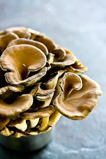 Maitake mushroom can also help in control diabetes.