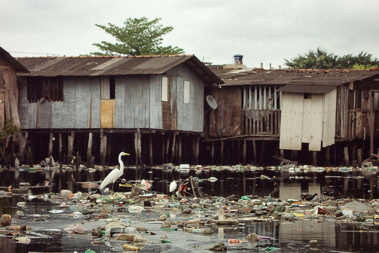 Favela de palafitas no estuário de Santos. Animais marinhos como aves e tartarugas confundem lixo com alimento e morrem após ingeri-lo. Foto: William Rodriguez Schepis / Instituto EcoFaxina
