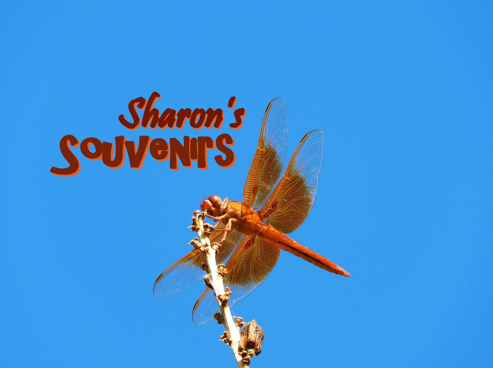 Sharon's Souvenirs
