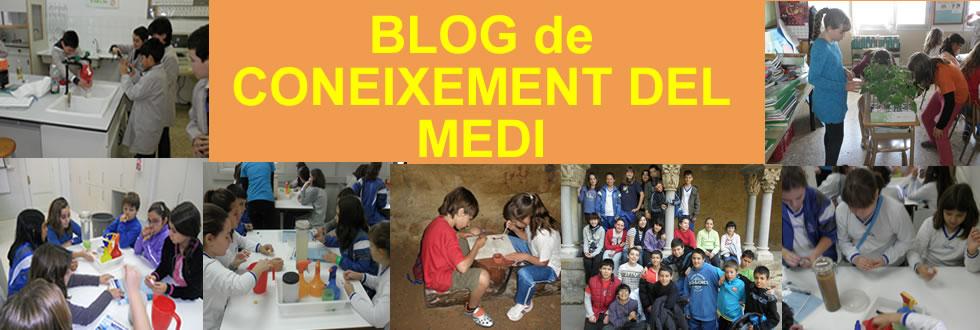 BLOG DE CONEIXEMENT DEL MEDI