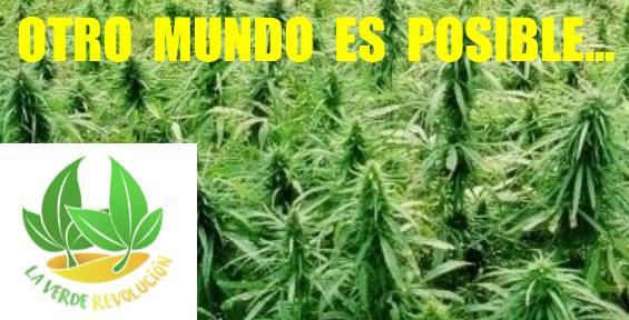 Un Proyecto Ecológico y Solidario.