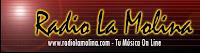 Radio La Molina, Tu musica Online