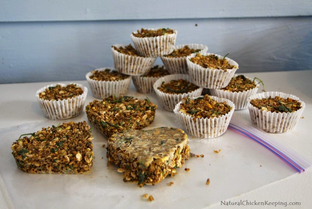 http://naturalchickenkeeping.blogspot.com/2013/10/diy-healthy-suet-cakes-for-your.html