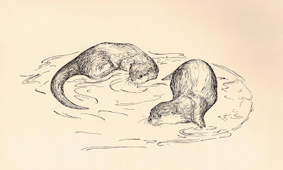 Bee and Jims the tame short-clawed Asian otters by Sophie Neville