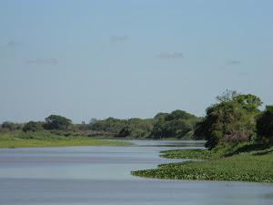 El Río Paraguay