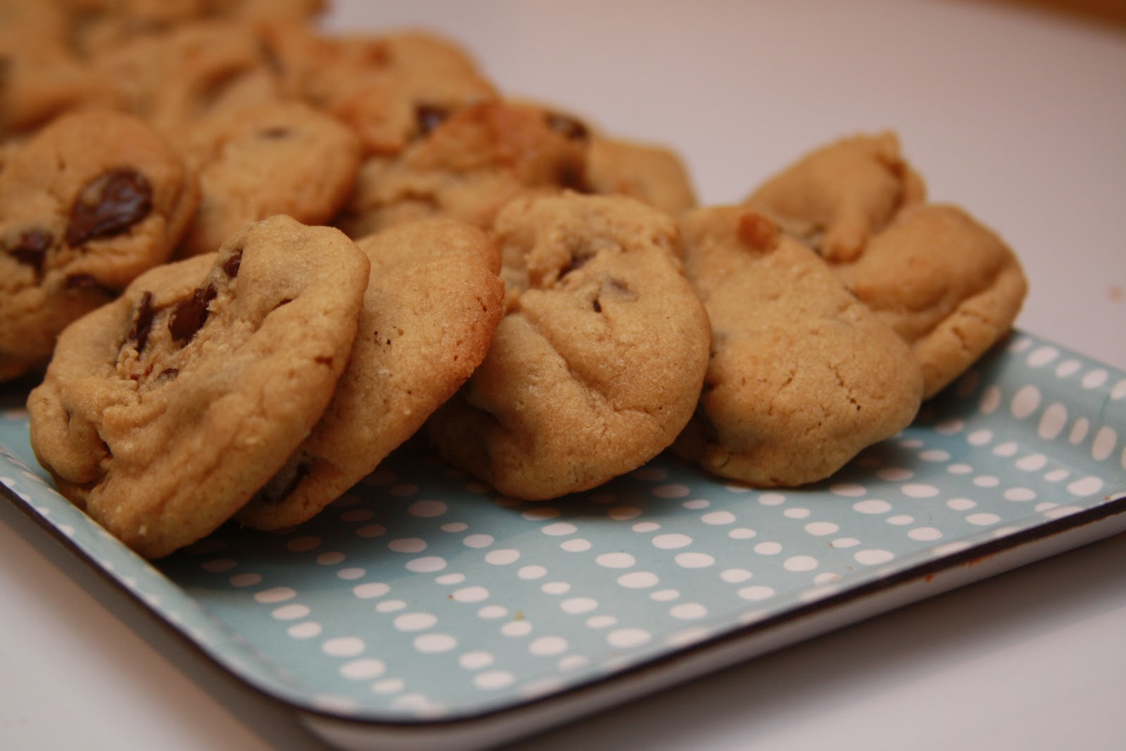 ... : The Amazing Peanut Butter-Oatmeal-Chocolate Chip Cookie Experiment