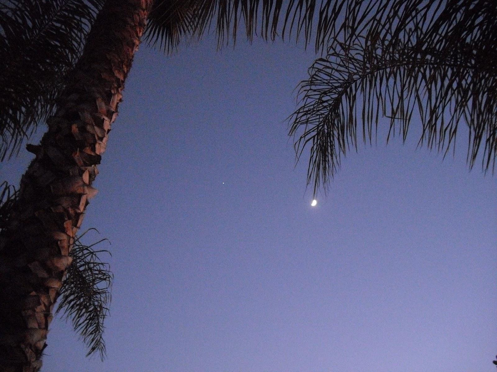 Californie en fran ais mars 2013 - Translate voulez vous coucher avec moi ...