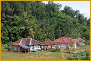 Kata Kata Ingin Pulang Rindu Kampung Halaman