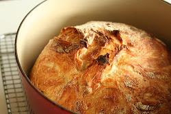 No-Knead Bread click for recipe