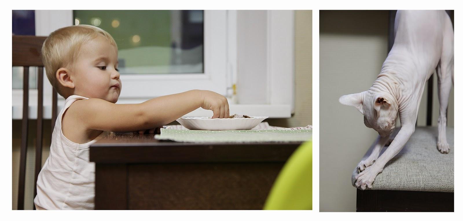 Ребенок ест печенье