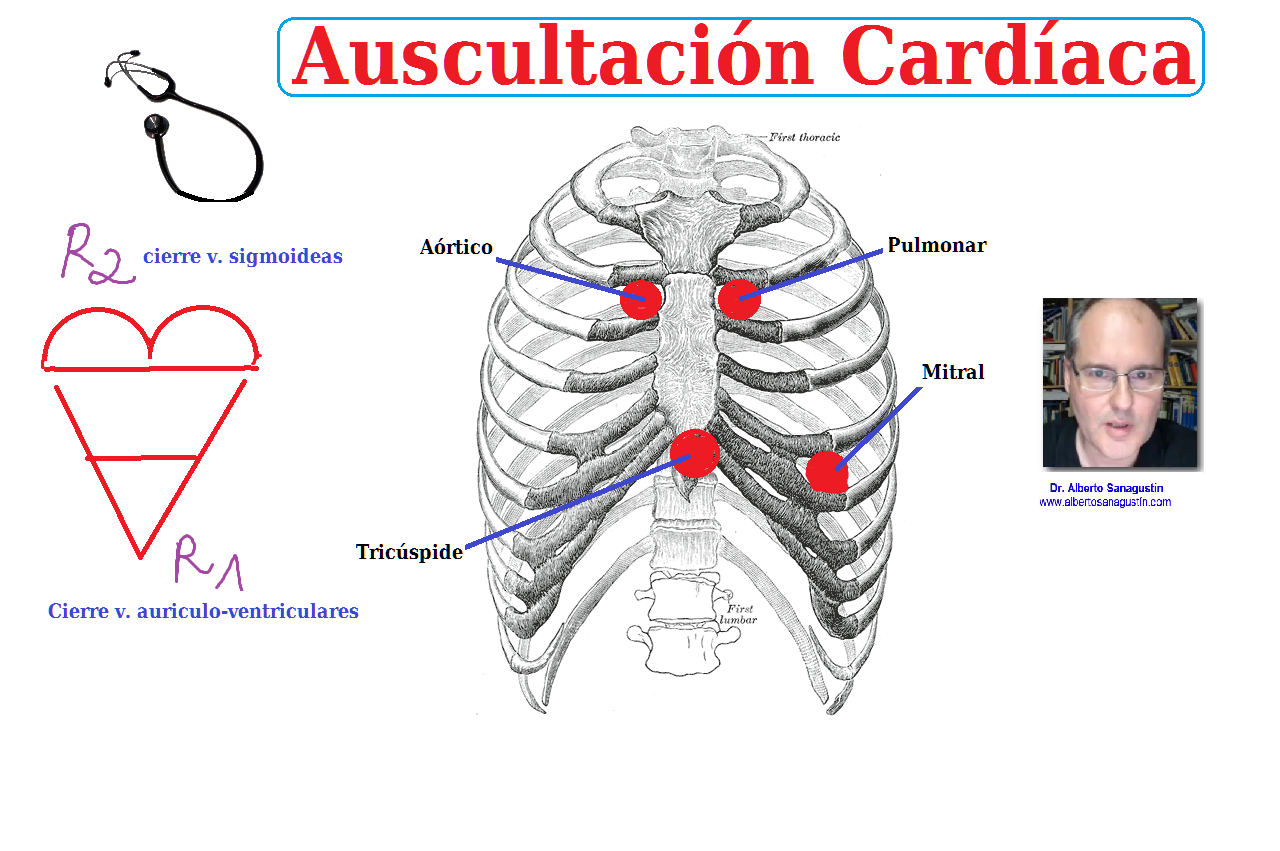 auscultación cardíaca