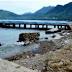Skandal Mega Proyek Palipi Hancurkan Harapan Nelayan