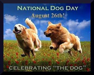 Resultado de imagen para happy national dog day