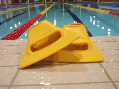 Zoomers Gold Review Improve Your Freestyle Kick In A Soft