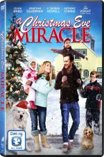Watch A Christmas Eve Miracle Online Free Putlocker