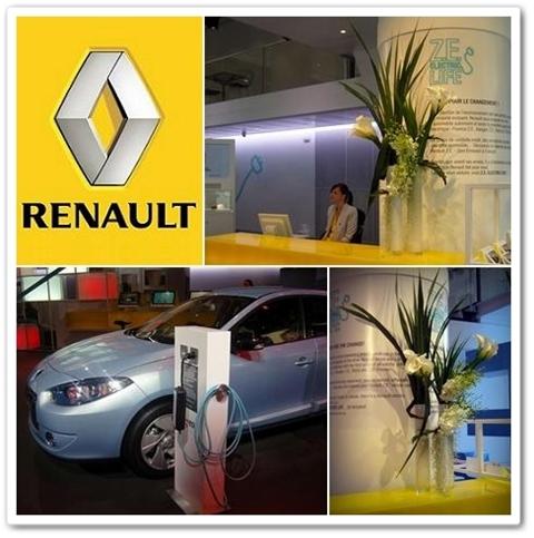 renault blommor bilar