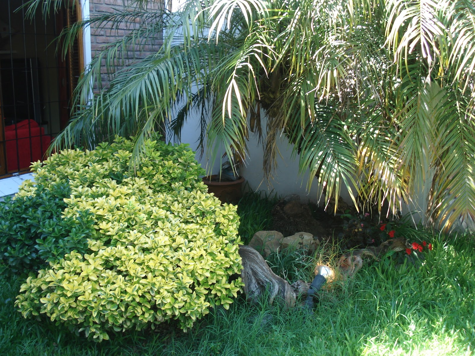 Reverdir Jardineria Y Paisajismo Noviembre 2012