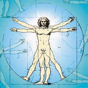 fakta tentang tubuh manusia