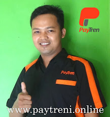 Owner www.paytreni.online