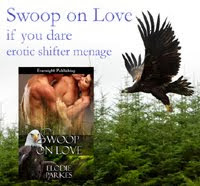Find a Swoop on Love excerpt