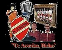 Te Acordás Bicho - Radio