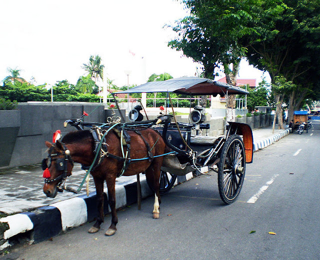 Gambar Angkutan Tradisional Delman
