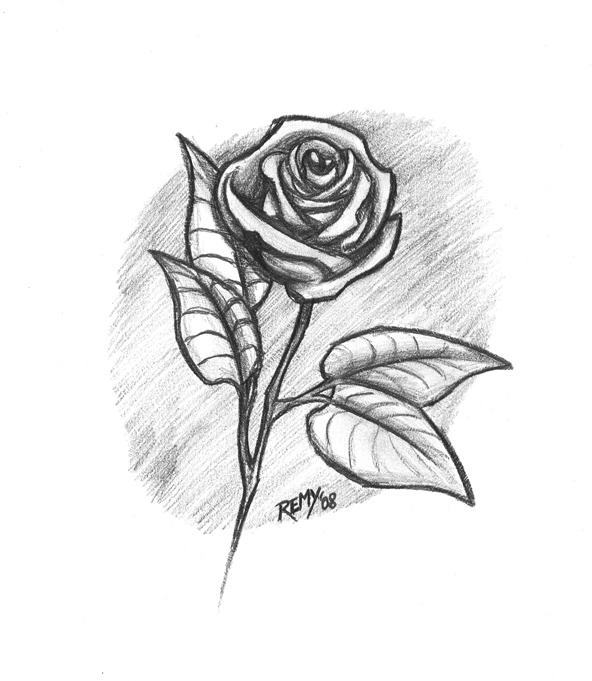 Imagenes dibujadas de rosas - Imagui