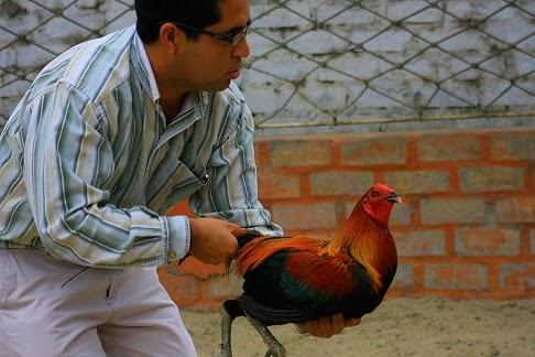 Vieja rubia abuelita monta la polla en pblico Cintas